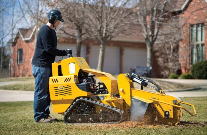 Laporte-Fort Collins Tree Trimming and Stump Grinding Services-We Offer Tree Trimming Services, Tree Removal, Tree Pruning, Tree Cutting, Residential and Commercial Tree Trimming Services, Storm Damage, Emergency Tree Removal, Land Clearing, Tree Companies, Tree Care Service, Stump Grinding, and we're the Best Tree Trimming Company Near You Guaranteed!